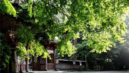 滋賀 日吉神社